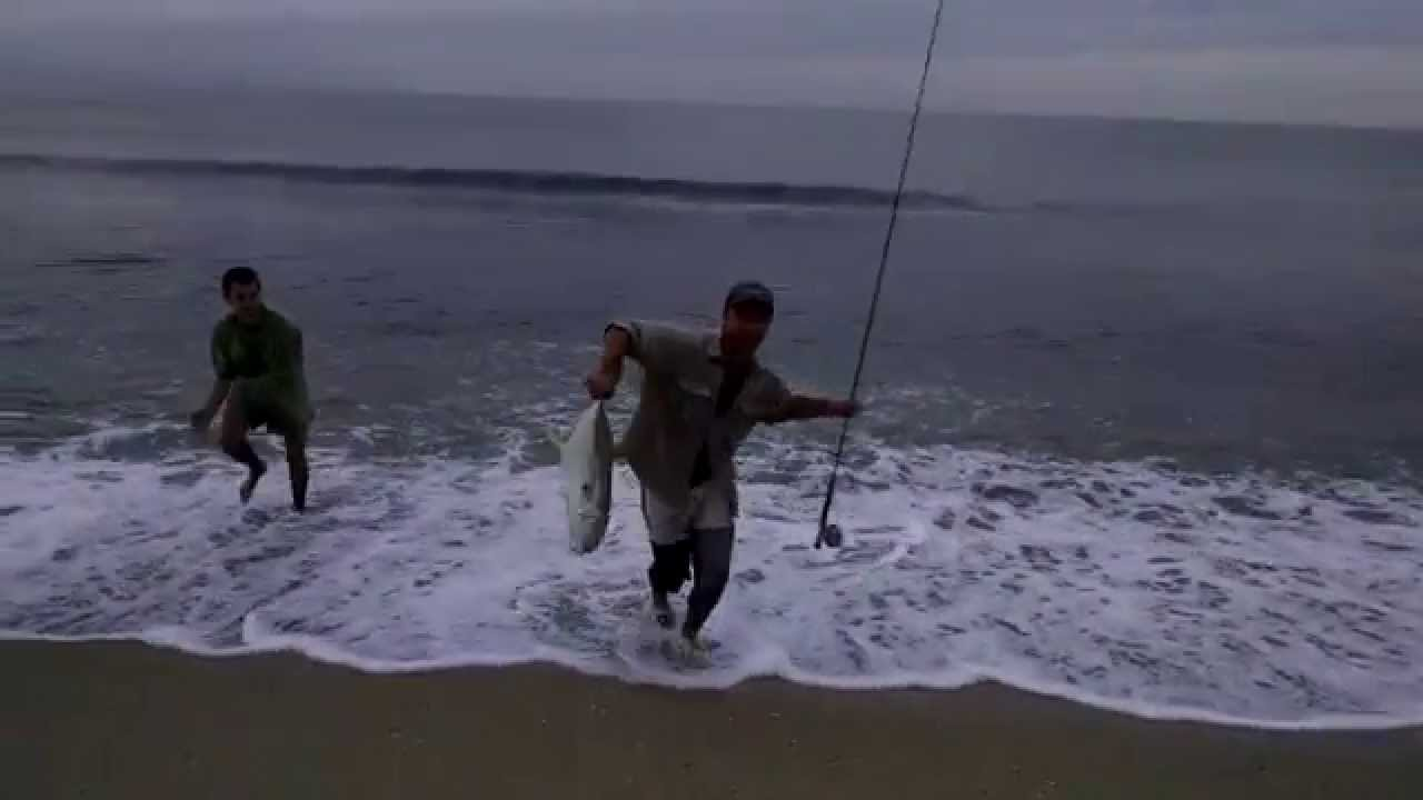 Fly fishing jack crevalle from beach in puerto vallarta for Nuevo vallarta fishing