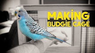 Making Budgie Cage Setup | Simple and Easy