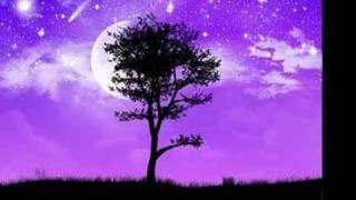 Peterchens Mondfahrt - Das Mondlied