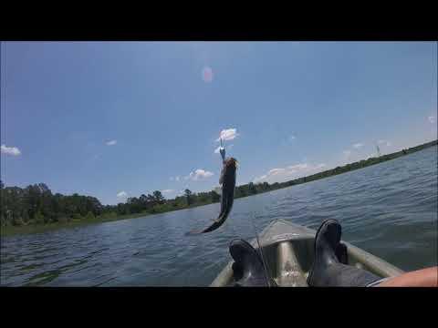 Bastrop Lake Fishing And Camping