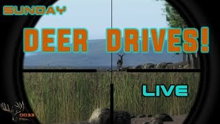 Sunday Multiplayer DEER HUNTING Live!! TheHunter 2018