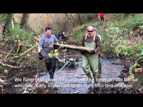 Bell Meadow, Bury St Edmunds. River Lark Conservation |