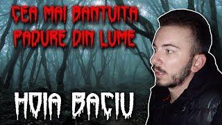AM RAMAS PESTE NOAPTE IN PADUREA HOIA BACIU