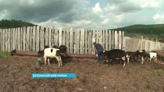 видео МРОТ в Ульяновской области