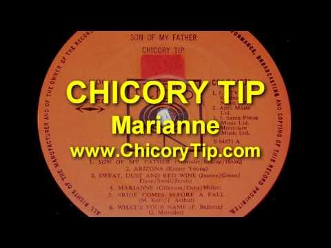 CHICORY TIP - MARIANNE (AUDIO)