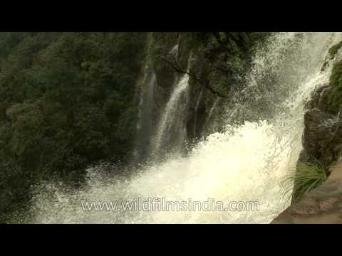 Cherrapunji - Misty sprays from a multitude of Waterfalls