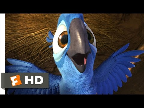 Rio (1/5) Movie CLIP - Real in Rio (2011)...