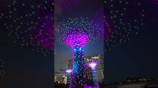 Symphony of Lights Garden By The Bay Singapore