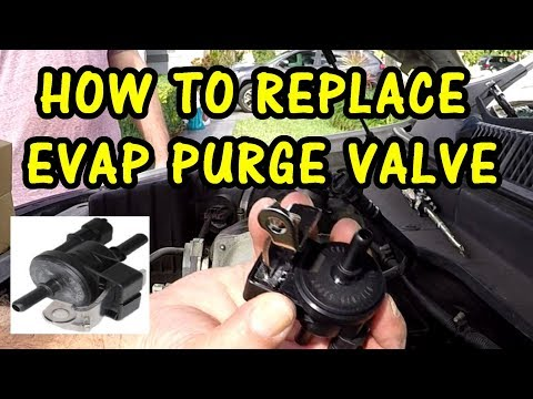 HOW TO REPLACE EVAP PURGE VALVE SOLENOID | 2008 SATURN VUE XR 3.6