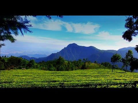 भारत की ये हसीन वादियां  Explore Natural Beauty of India , Nature Photography.