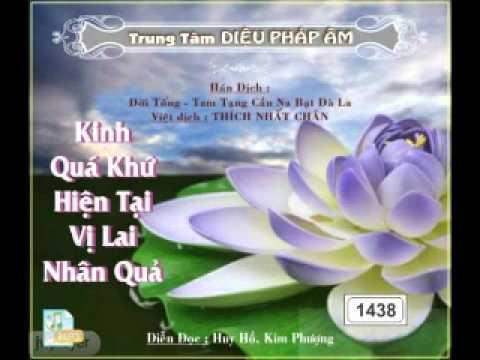 Kinh Quá Khứ Hiện Tại Vị Lai Nhân Quả - DieuPhapAm.Net