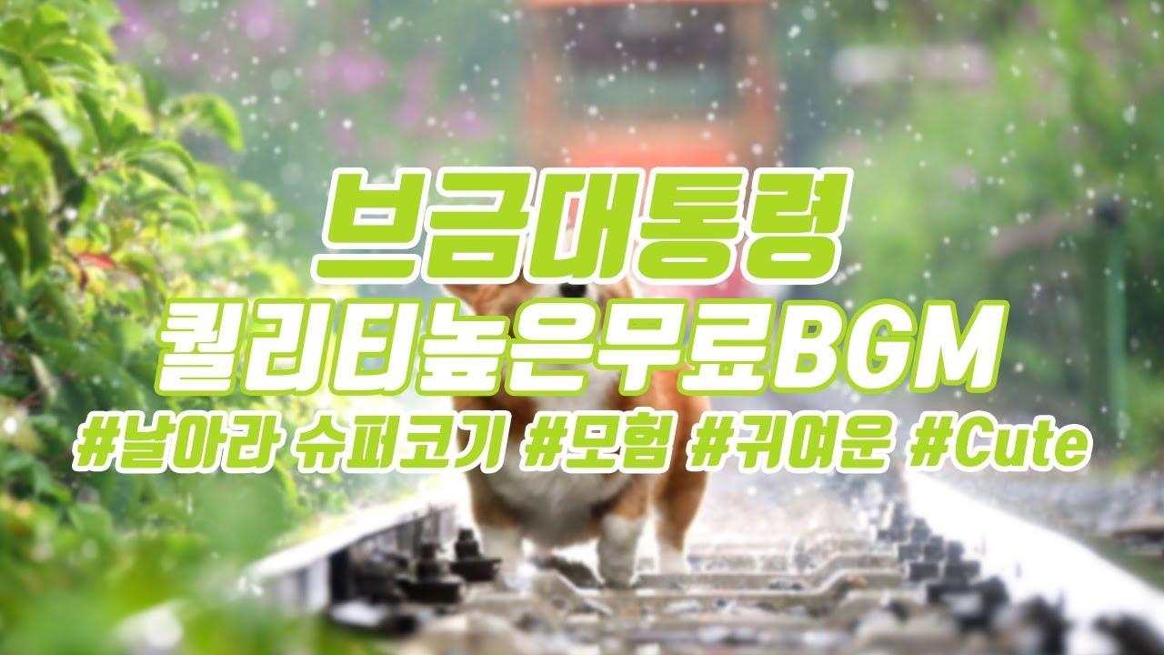 [브금대통령](모험/귀여운/Cute) 날아라 슈퍼코기/Flying SuperCorgi [무료음악/브금/Royalty Free Music]