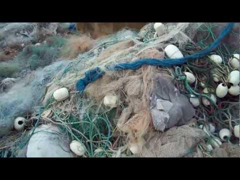 Nylon PA6 Monofilament Fishing Net Scrap