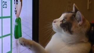 Wii Fit Cat