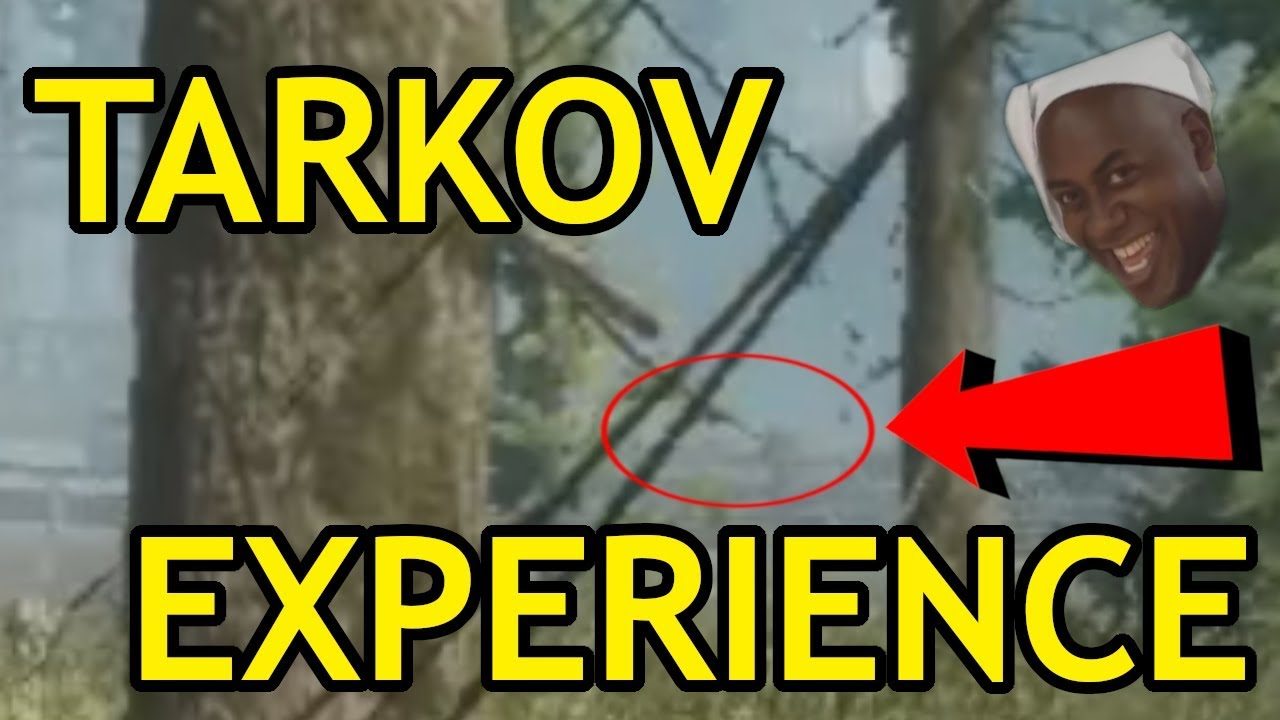 escape from tarkov how to stop crashes