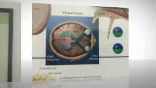 (303) 471-5263 | Find vision insurance & eye problems @ Highlands Ranch Optical & Eyecare