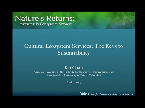 Cultural Ecosystem Services: the Keys to Sustainability