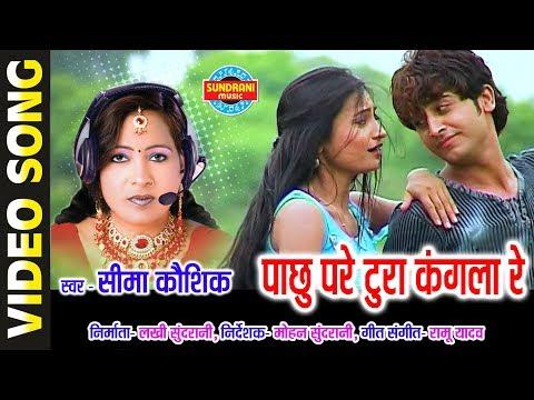 PACHHU PADE TURA KANGAL - SIMA KAUSHIK - GULABI KALI  BHAG 2 - CG SONG - LOK GEET