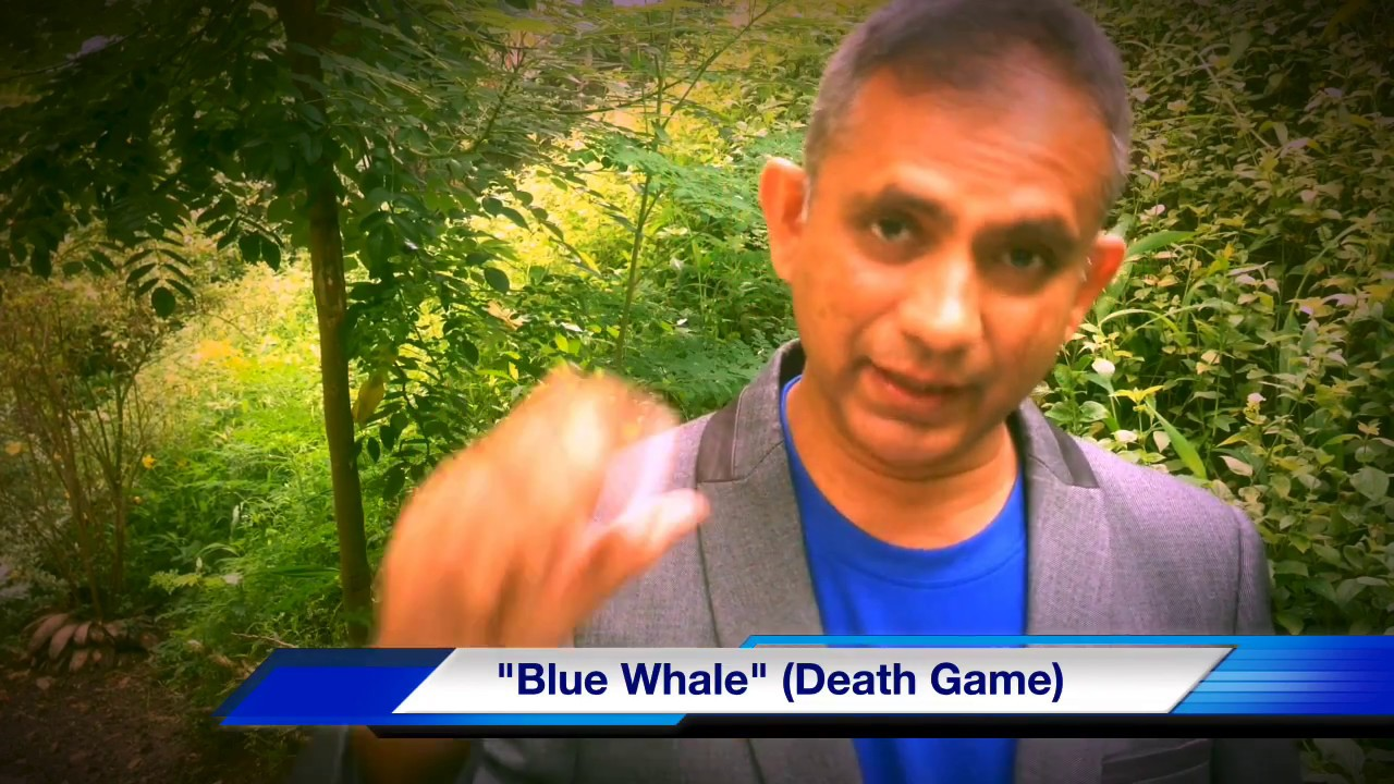 blue whale the death game sinhala බ ල ව ල මරණය