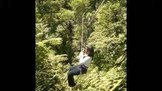Canopy walk Claveria, Misamis Oriental, Philippines