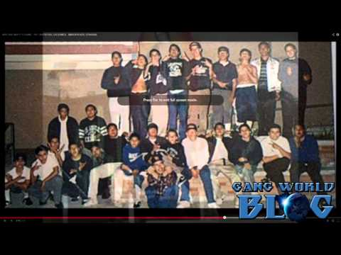 Vineland Boyz 13 Gang History (San Fernando Valley)