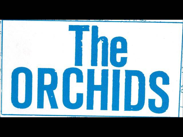 the-orchids-its-only-obvious-heinz-brossolat
