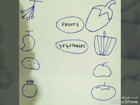 Activity and e v s worksheets for class l k g  and u k g