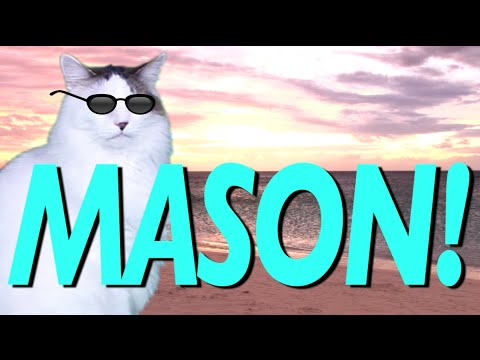 HAPPY BIRTHDAY MASON! - EPIC CAT Happy Birthday Song