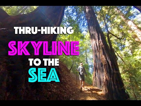 Thru-hiking the Skyline to the Sea Trail