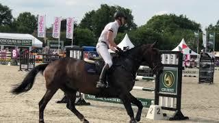 Gypsy d' Usance GP Eext 2019