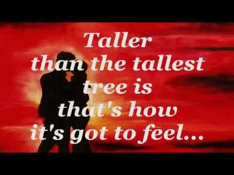 ALL THE WAY (Lyrics) - CELINE DION With FRANK SINATRA