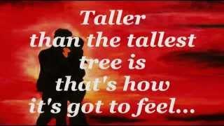 ALL THE WAY (Lyrics) - CELINE DION with FRANK SINATRA