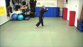 Repeat youtube video Tracy's Kenpo - Form 6