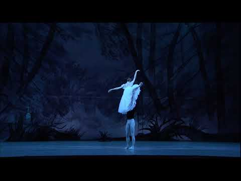 Giselle - Bolshoi Ballet in Cinema (Official trailer)