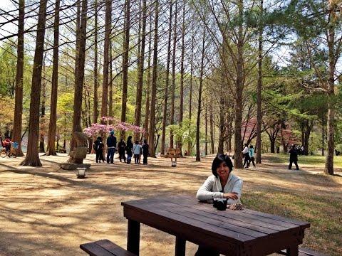 #3 ReVlog - Seoul 2015