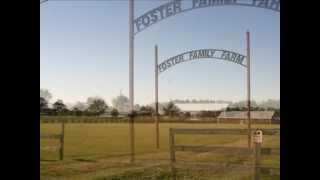 5 Acres For Sale in Folsom, La.  - 28069 La Polo Farms Road