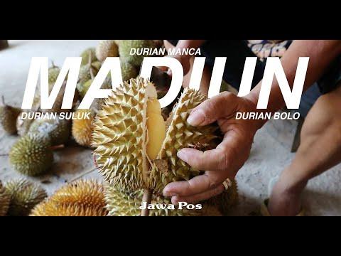 Jawa Pos Belah Durian Edisi 5: Durian Suluk Madiun
