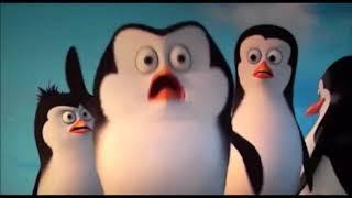 Ringo Starr · Pinguini Tattici Nucleari (TRAKWELL Remix)