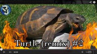 TURTLE (REMIX) #2