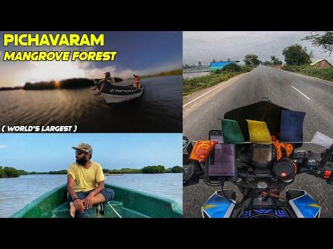 Arakkonam To Pichavaram Mangrove Forest Via Pondicherry😍-World's 2nd Largest Mangrove Forest| Drone
