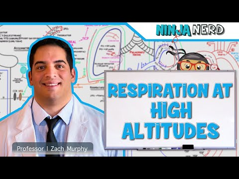 Respiratory | Respiration at High Altitudes