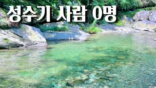 서울에서 2시간 인생계곡 좌표 공유