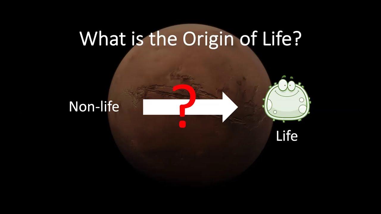 Understanding the Origins of Life: A Geologists Perspective