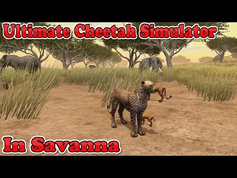 Ultimate Cheetah Simulator In Ultimate African Savanna-By Gluten Free Games-IOS/Google Play