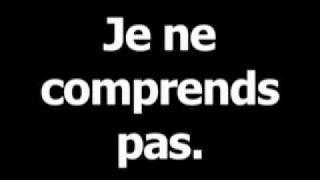 French phrase for I dont understand is Jenecomprendspas.