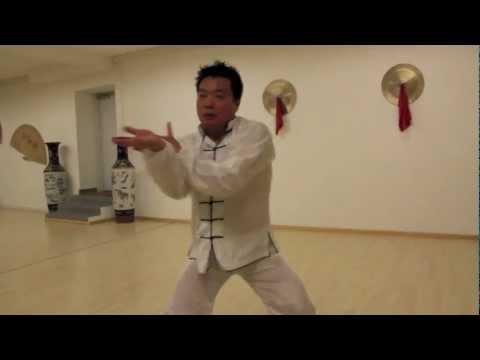 Zhu Xinhua performing Tai Chi Chen