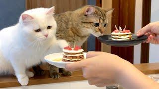 手作り誕生日ケーキを作ったら悲しいことに…泣