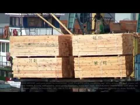 Exports of fresh sawn pine timber / lumber from Ukraine. Imports in Turkey. Supply by ship parties.