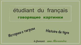 Урок французского языка. История с тигром. Histoire de tigre.