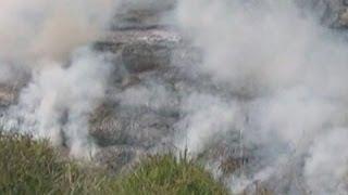 Raw: Growing Lava Stream in Hawaii
